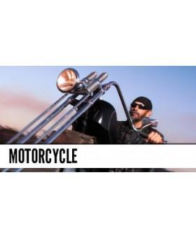 Harley Davidson & Chopper